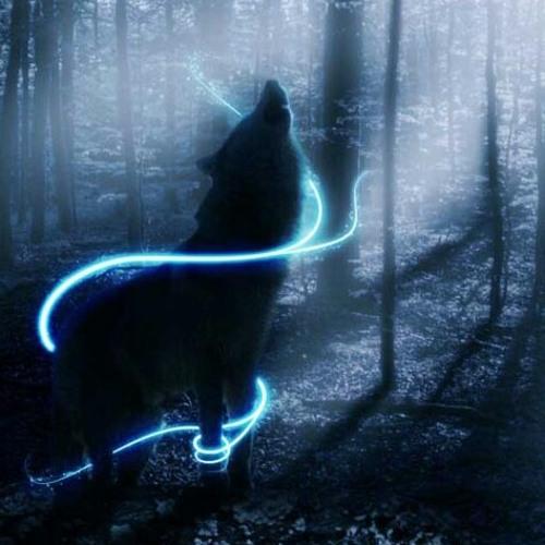 niamh_the_wolf_lover_girl's avatar