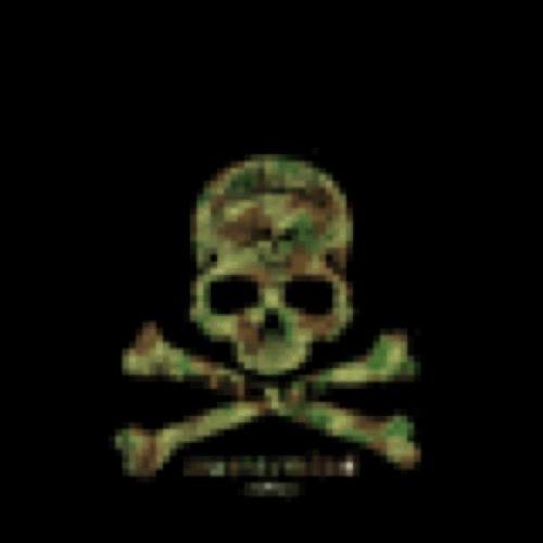 cool skull boy's avatar