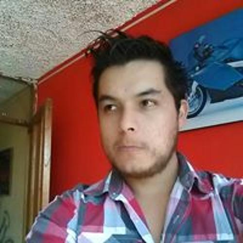 Luis Jose Polar's avatar