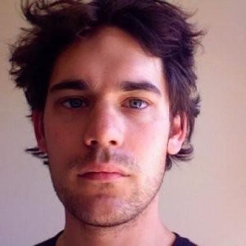 Matthijs van Henten's avatar