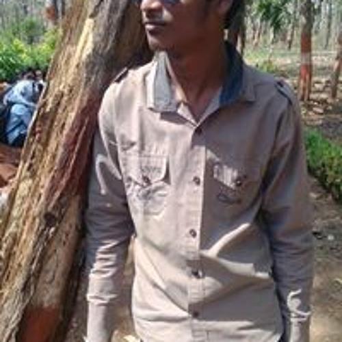 Chaitanya P Zade's avatar