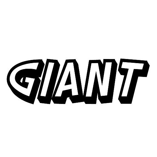 G i a n T's avatar