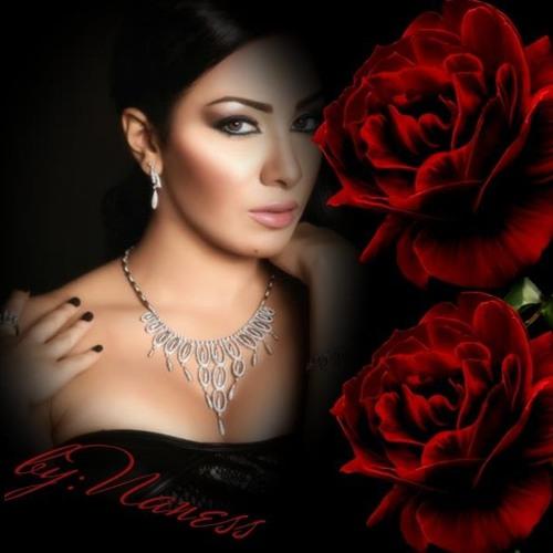 Naness Moukhtar's avatar