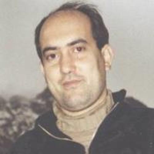 Mohammad Hassan Vafaee's avatar