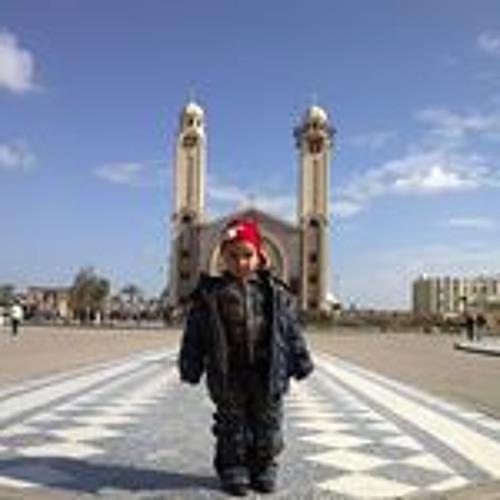 user529506428's avatar