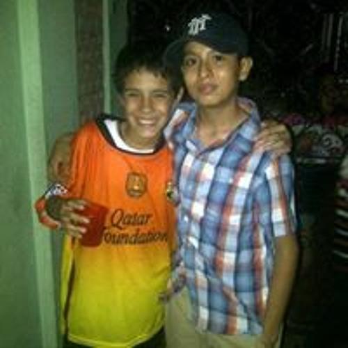 Daniel Sanchez 460's avatar