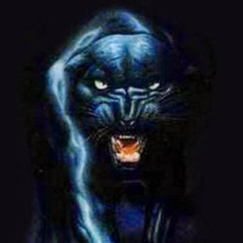 peace panther (peacewolf)'s avatar