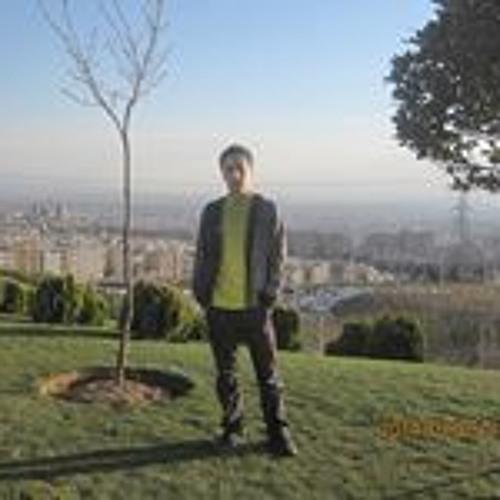 user229567542's avatar