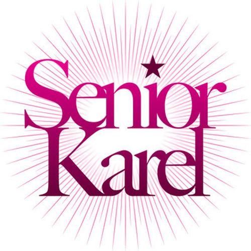 Senior Karel's avatar