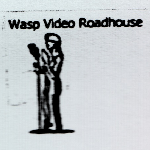 Wasp Video Roadhouse's avatar