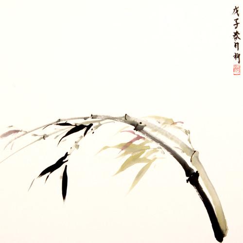 Silence-at-45hz's avatar