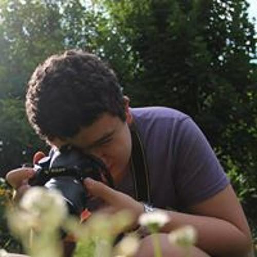 Alexandru Chereches 1's avatar