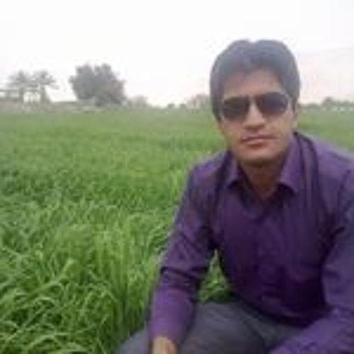 Hossein Mahmoodi 2's avatar