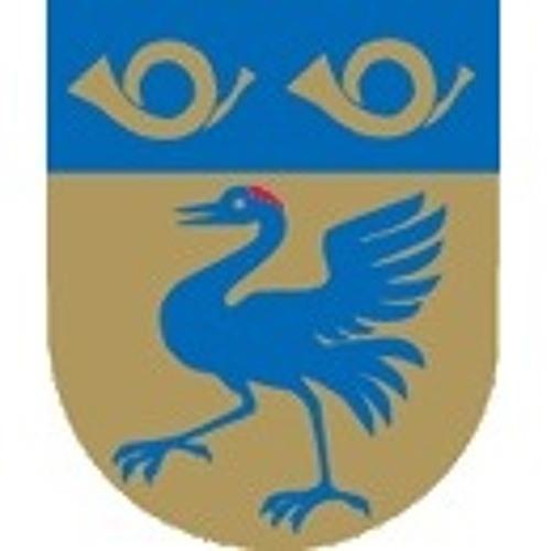 Markaryds Kommun's avatar
