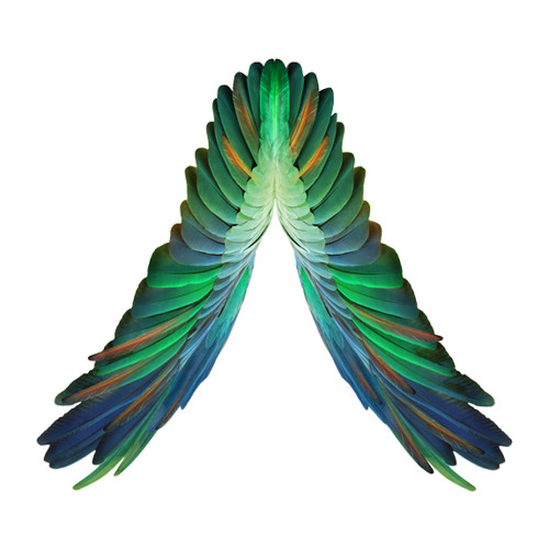 Departureslive's avatar