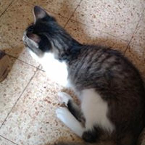 calicoleopard's avatar