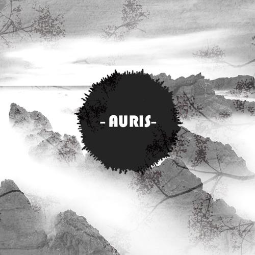 -Auris-'s avatar