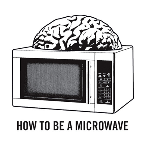 HOW TO BE A MICROWAVE's avatar