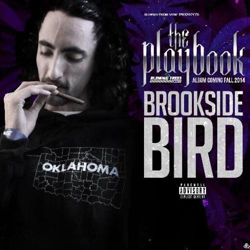 brooksidebird's avatar