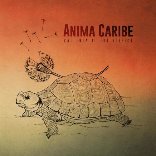 Anima Caribe's avatar
