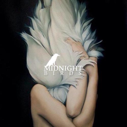 MidnightBirds's avatar