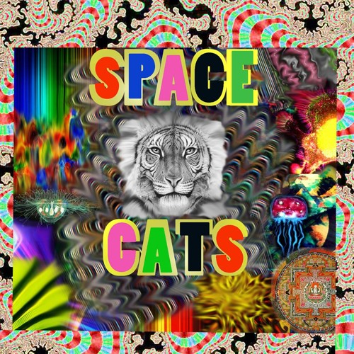 Space Cats's avatar