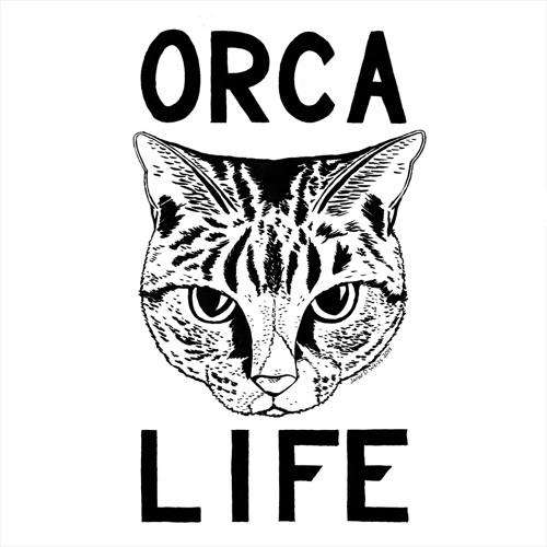 Orca Life's avatar