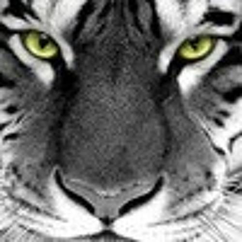 ana.roig's avatar