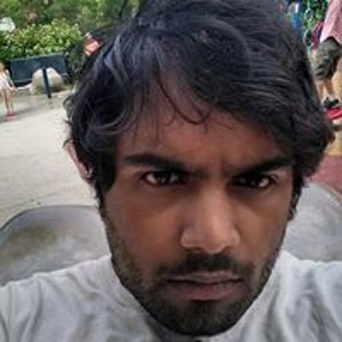 Gopal Menon's avatar