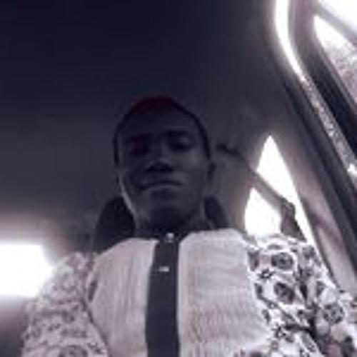 Bankole B Jamgbadi's avatar