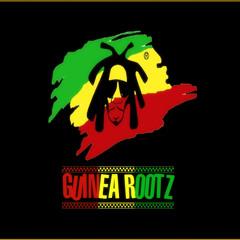 Guinea_Rootz