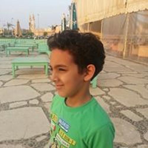 Ahmed Mahmoud El Wakeel's avatar