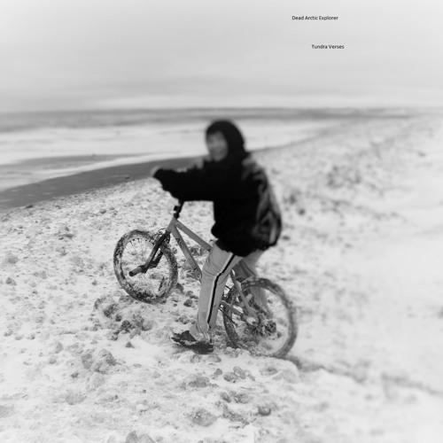 Dead Arctic Explorer's avatar