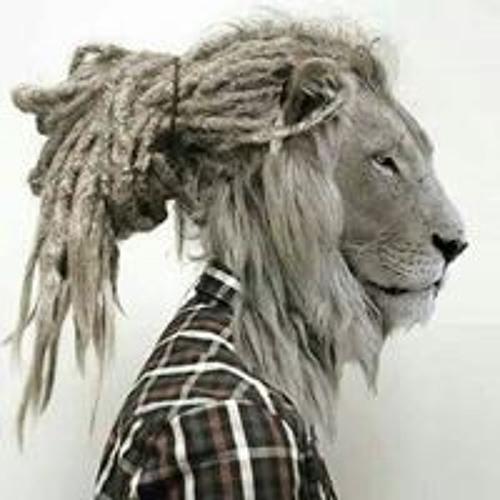Tawfik Coundi's avatar