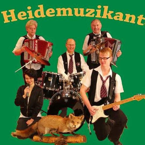 De Heidemuzikanten's avatar