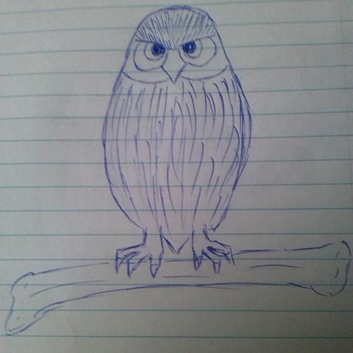 bird/bones's avatar