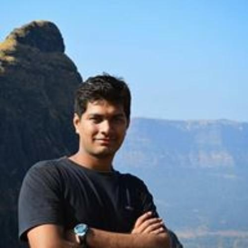 Parag Mhamunkar's avatar