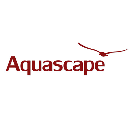 Aquascape music's avatar