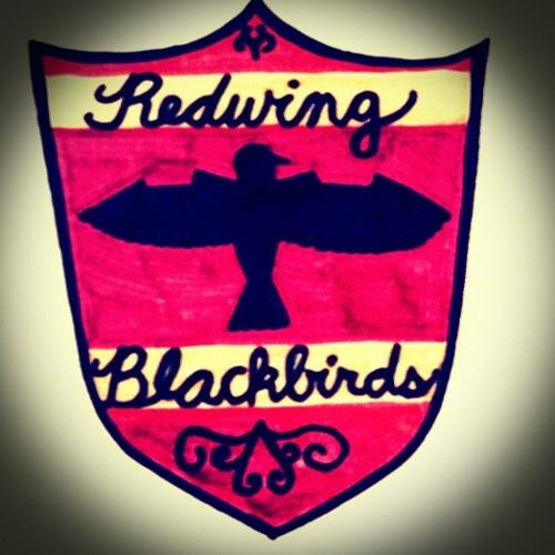 Redwing Blackbirds's avatar