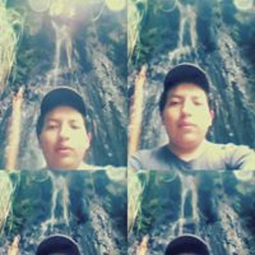 Lucho Villarreal 1's avatar