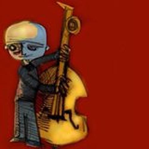 Milko Ambrogini's avatar