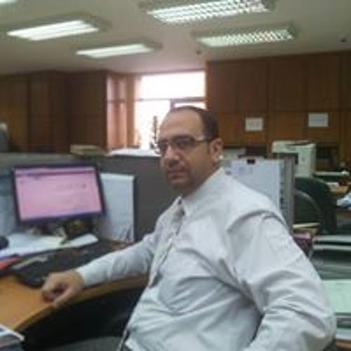 Tawfik Nemr 1's avatar