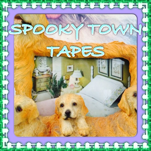 Spooky Town Tapes's avatar