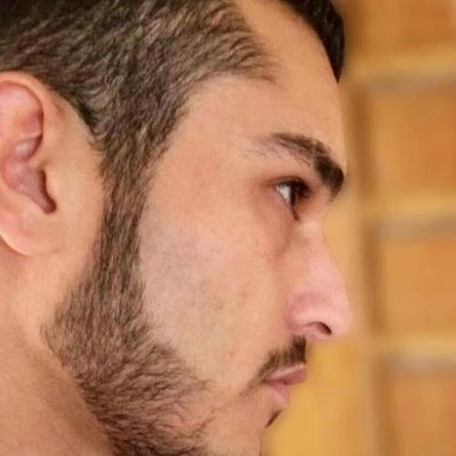 Mohammad N Haddad 1's avatar