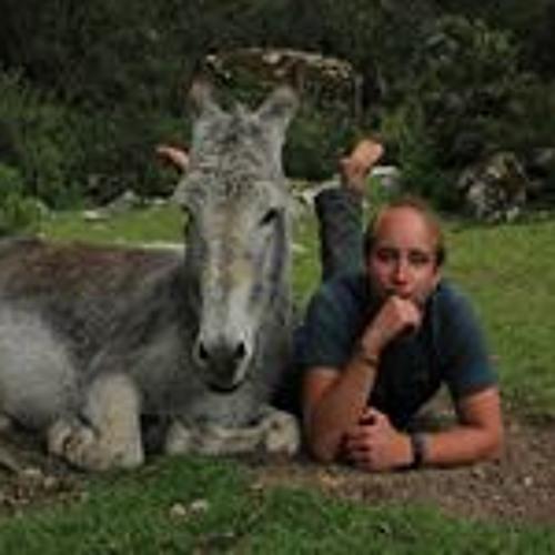 Hannes Herrmann 3's avatar