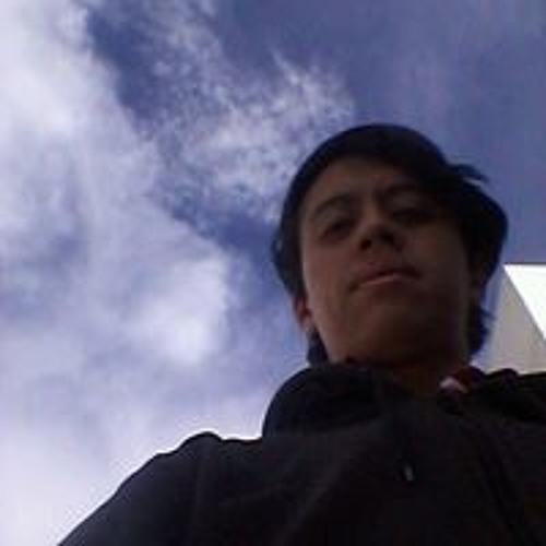 David Sebastian Pulido's avatar