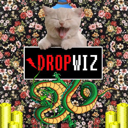 DROPWIZ's avatar