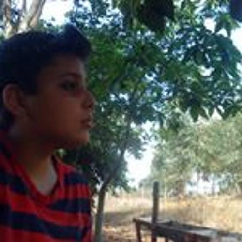 Guilherme Diniz Sousa's avatar