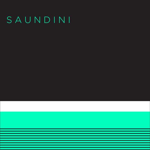 Saundini's avatar