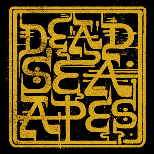 Dead Sea Apes's avatar